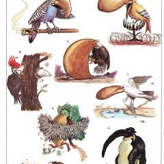 The Birds of IsraelNational Lampoon's Encyclopedia of Humor 1973
