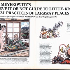 Rick Meyerowitz's Believe It Or Not Guide To Little-Known Sexual Practices Of Faraway Places