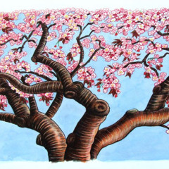 End papers: Cherry trees are central to the story. I first drew this one in the Brooklyn Botanical Garden.